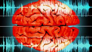 Neuroimaging Of Brain Shows Who Spoke To A Person And What Was Said