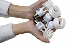'Green' lightbulbs poison workers