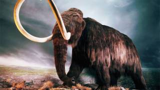 Russian scientists to attempt clone of woolly mammoth