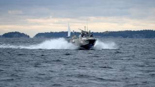 Swedish Forces Admit Second Submarine Hunt Near Stockholm: Reports