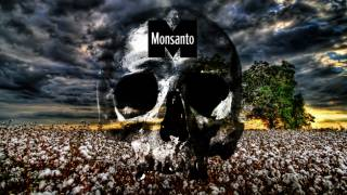 Bowing to Monsanto, USDA Approves New GMO Soy and Cotton Crops