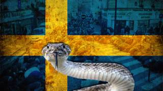 Sweden: Muslim Migrants Batter Gay Man to Death, Wrap Snake Around His Neck