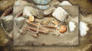 Half of Western European men descended from one Bronze Age 'king'