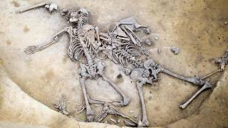 Bones From 6,000-Year-Old Massacre Found in France