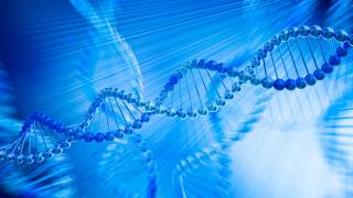 Culture Etched on Our DNA More Than Previously Known, Research Suggests