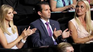 "Was the Meeting Between Donald Trump Jr. and the Russian Lawyer Really ""Treason"" or the ""Smoking Gun"" of Collusion?"