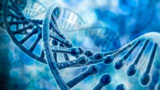 Gene Editing Reveals New Insights About Early Human Development