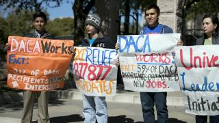 DHS Official: Donald Trump Wants DACA Illegals to Get Amnesty