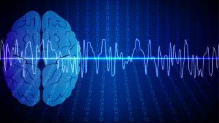 Brain Waves Reflect Different Types of Learning