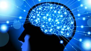 Scientists Use Electrical Stimulation to Improve Human Memory