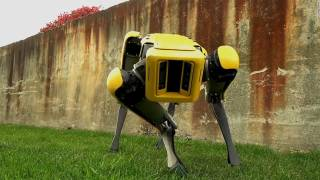Boston Dynamics Robots Can Now Hold the Door for Its Friends