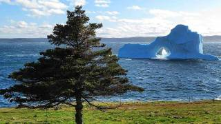 Picture-Perfect Iceberg Dazzles on Newfoundland's Bonavista Peninsula