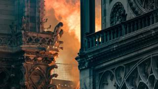 Notre Dame: What Went Up in Flames