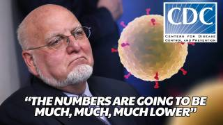 CDC Director: Coronavirus Death Toll Will Be 'Much, Much, Much Lower' than Projected