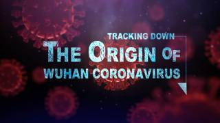 Tracking Down the Origin of the Wuhan Coronavirus