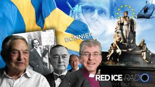 Democracy to Death: Sweden's Path to Disintegration & Palme Assassination