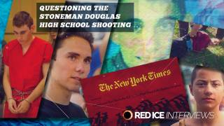 Questioning The Stoneman Douglas High School Shooting