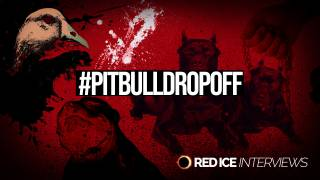 AntiPit: Addressing the Pit Bull Question
