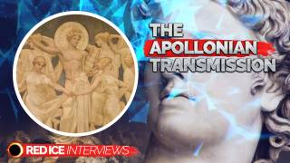 The Apollonian Transmission