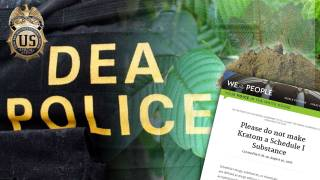 Red Ice Live - Paul Kemp: Help Stop the DEA from Banning Kratom