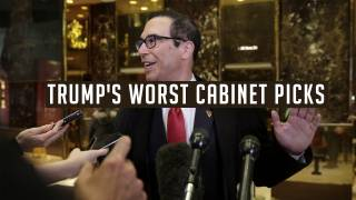 Trump's Worst White House Cabinet Picks