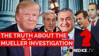 The Truth About the Mueller Investigation - Operation Reinhard