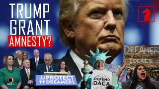 Is Trump Going to Grant Amnesty? - Seeking Insight