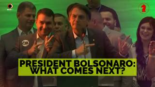 President Bolsonaro: What Comes Next? - Seeking Insight