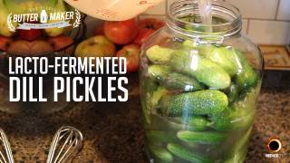 Lacto-Fermented Dill Pickles