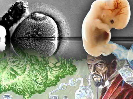 hybrid embryo research September 5, 2008 embryonic stem cells and admixed (human-animal hybrid) embryos download 'es cells & hybrids' as a pdf embryonic stem cells embryonic stem cells (es cells) are those at.