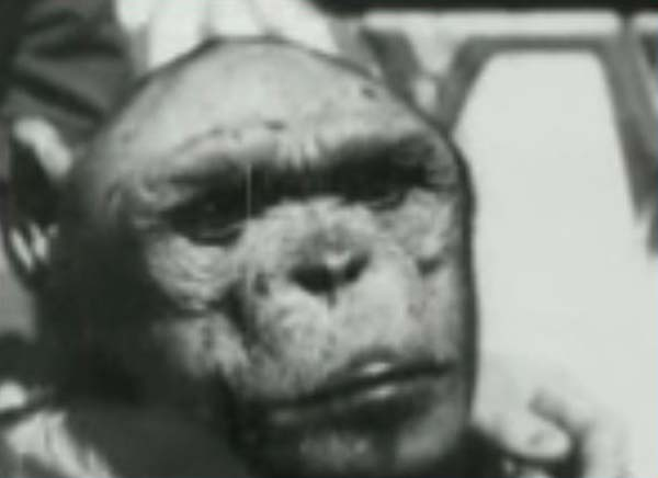 "Oliver the ""Humanzee"""