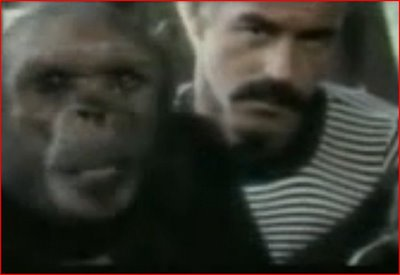 """Oliver the """"Humanzee"""""""