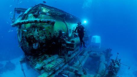 life under water essay essays on life under water essay through