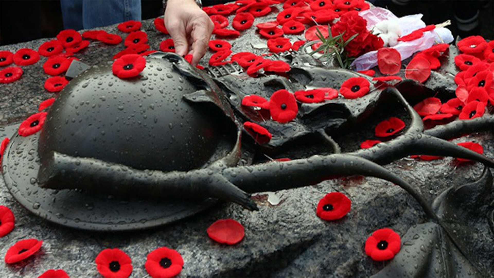 an analysis of the remembrance day of the sufferers of war in canada By 1920, when guerin, with the help of the american legion, established the first poppy sale in the us, the flower was well known in the allied countries — america, britain, france, canada, australia and new zealand — as the flower of remembrance.